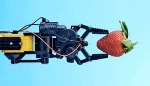 robotic arm holding strawberry
