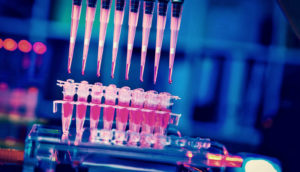 cancer stem cell research with multiple pipettes