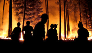 forest fire (fires, carbon storage, and ecosystems)