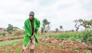 kenyan farmer wears green coat in field