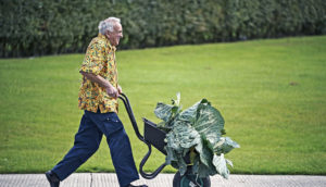 man running with giant cabbage (purpose & healthy habits concept)