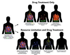 limiting pathogen resources (fighting drug resistance)