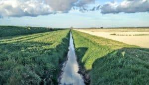 stream near field (streams + watersheds)