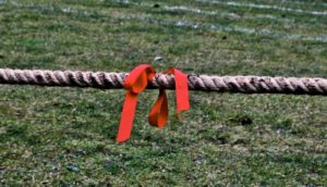 tug of war rope (Fragile X neural tug-of-war concept)