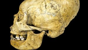 baby skull binding