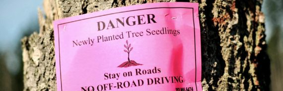 pink sign warns of seedlings - reforestation