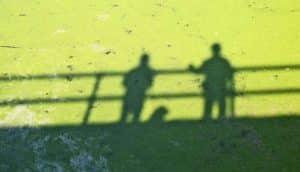 shadows of two people on bridge on duckweed