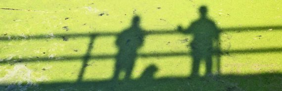 shadows of two people on bridge on duckweed