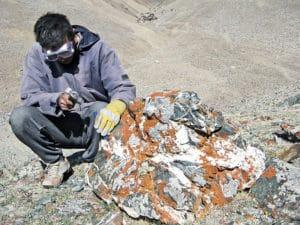 Batbaatar in field