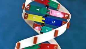 DNA model on blue