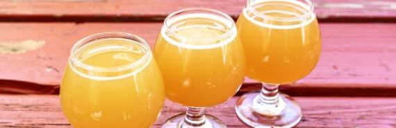 glasses of hoppy beer