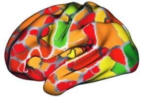 fcMRI heat map
