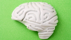 plastic brain on green background (ALS concept)