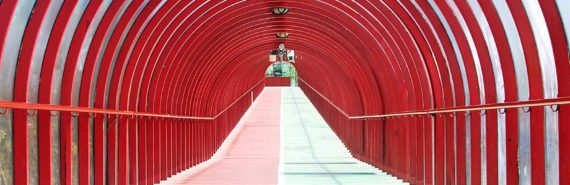 red tunnel (nucleus concept)