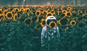 astronaut in field of sunflowers