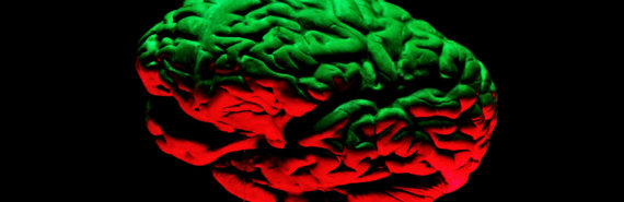 brain in green and red light