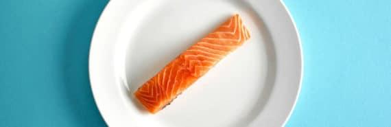 salmon steak on plate - aquaculture