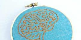 embroidered brain