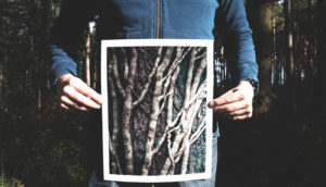 person holds image of branches in front of body - intestinal inflammation
