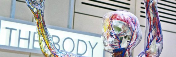 "anatomy model in front of sign ""the body"""