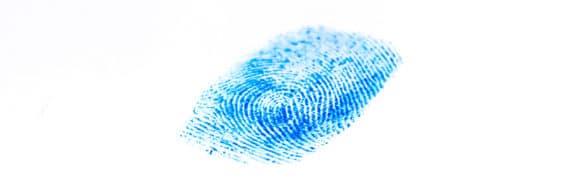 blue fingerprint on white