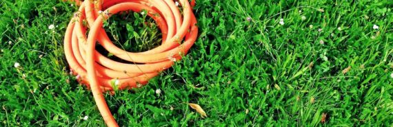 orange hose on grass (low-carb diet concept)