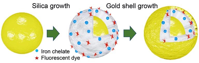MRI contrast diagram