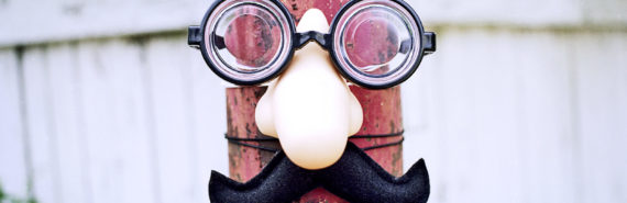 fake nose and glasses (sense of smell concept)