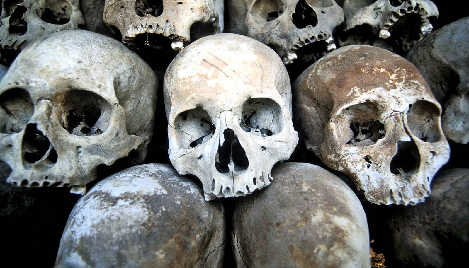 Skull DNA fills in picture of Rome-invading barbarians