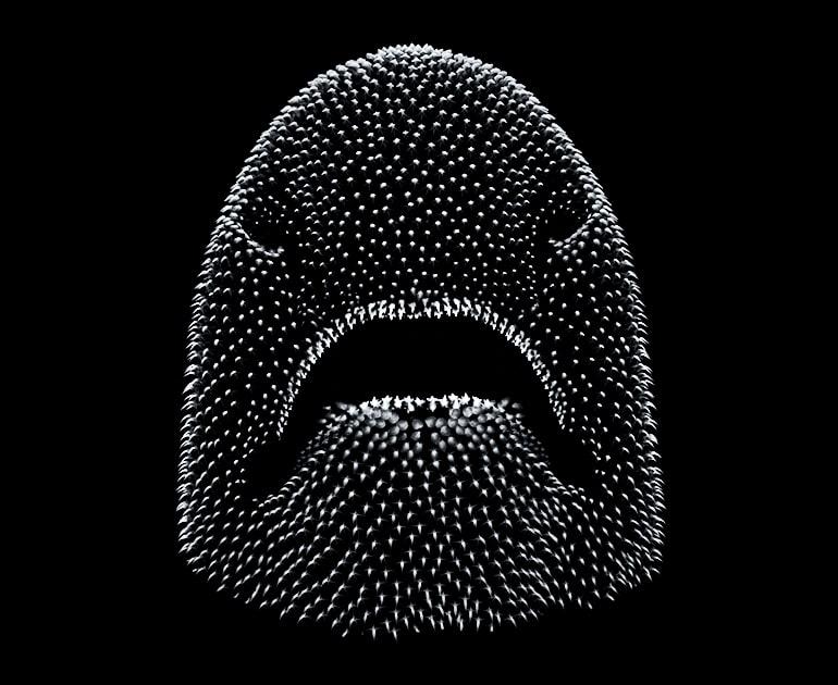 shark-skin teeth