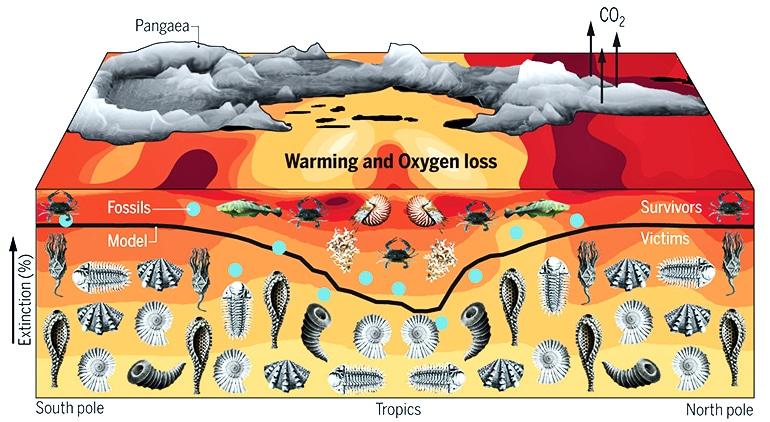 Permian era extinction graphic