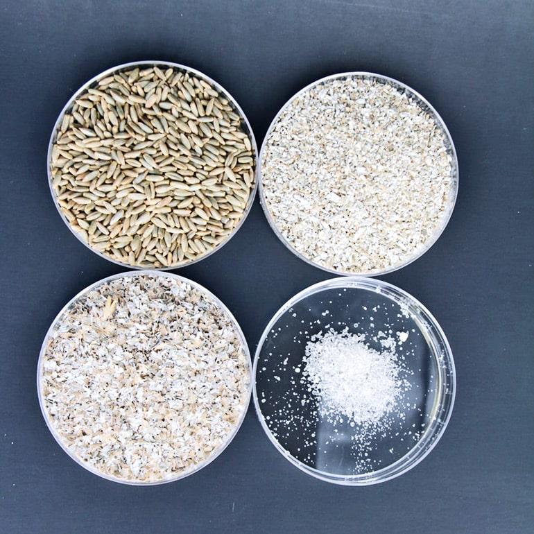 rye grain bran