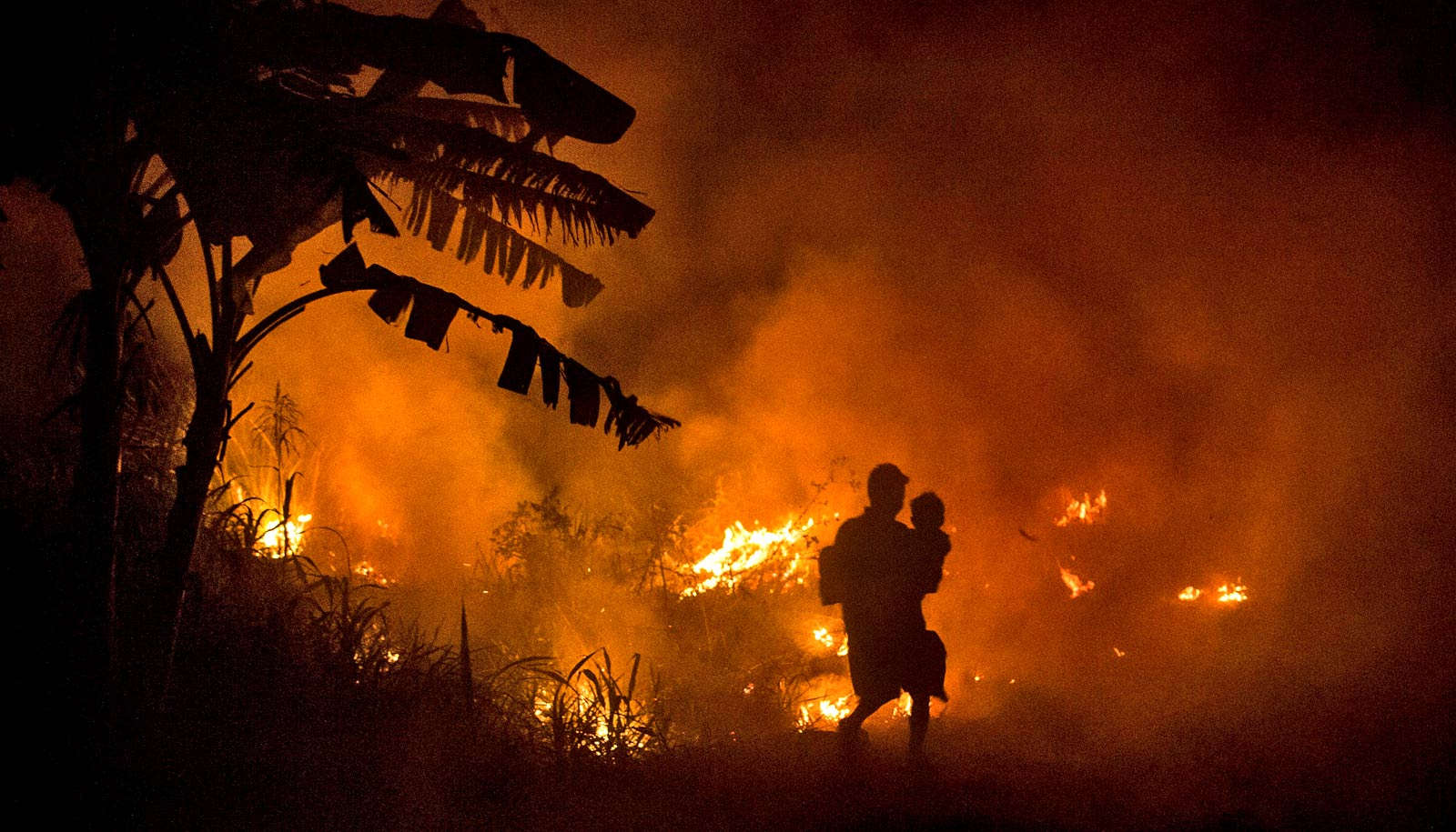 Indonesian fires robbed kids of height and future income