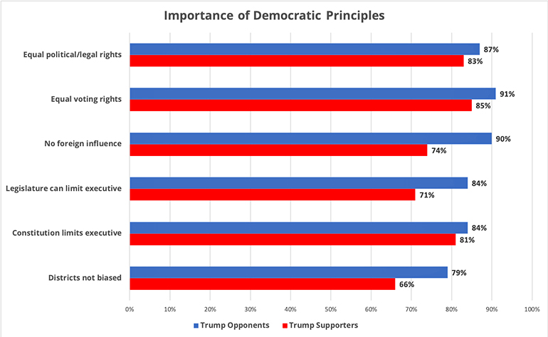 democratic norms essentials