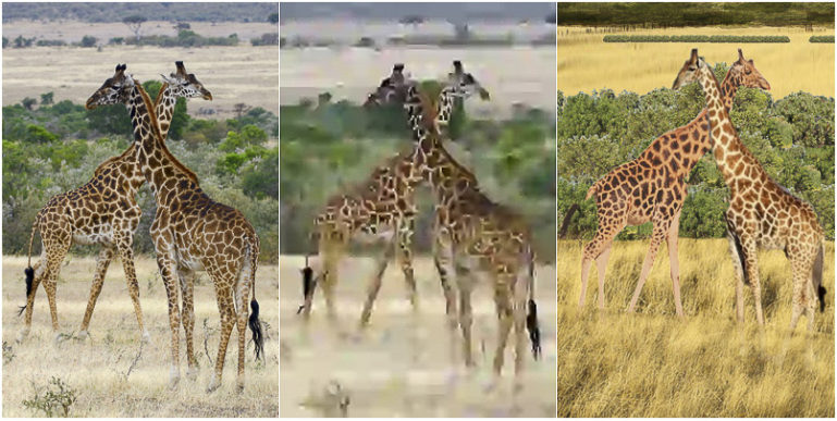 image of giraffes and two reconstructions