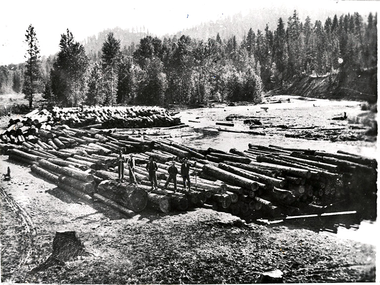 Teanaway river logging