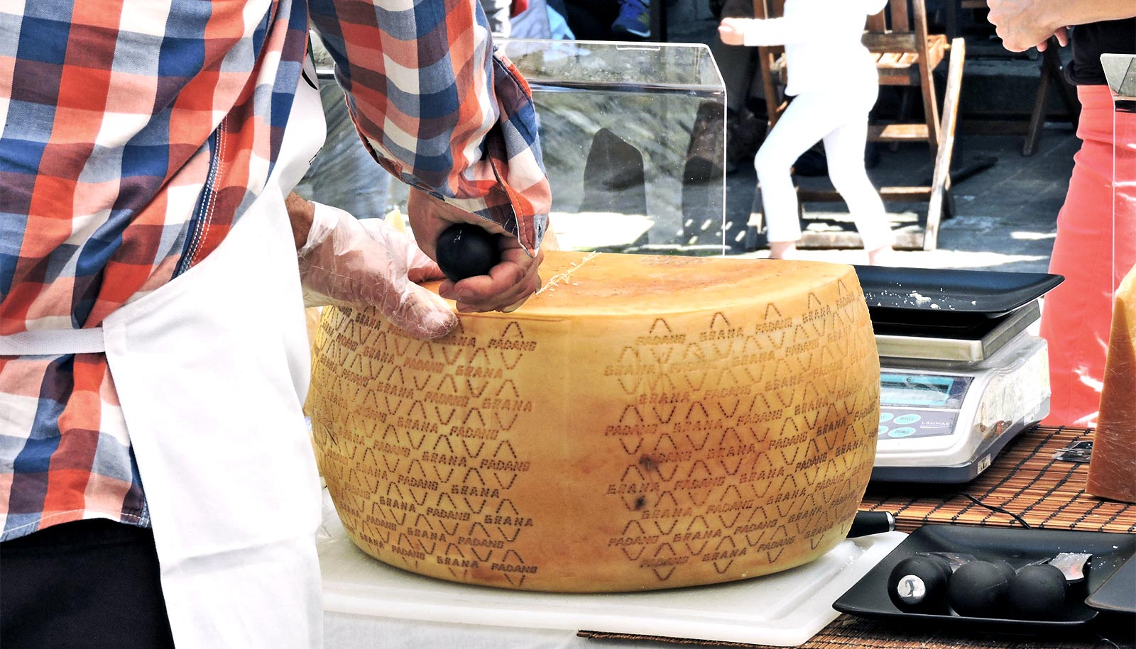 Rind bacteria may be key to cheese allergy relief