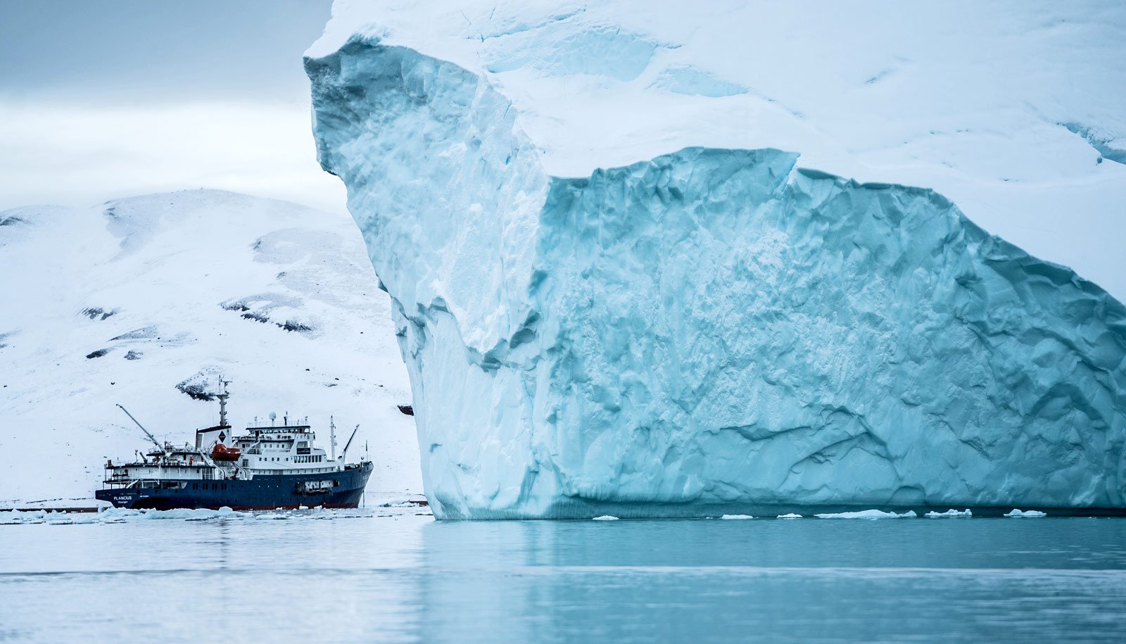 Snowline helps set melting speed of Greenland ice sheet