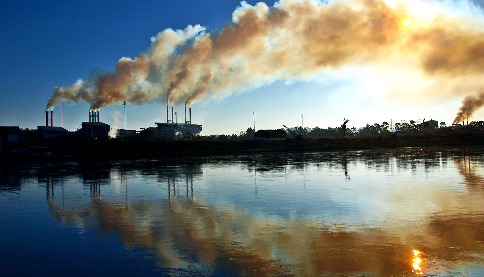 Air Pollution Causes Birth Defects And Fetal Death In Rats