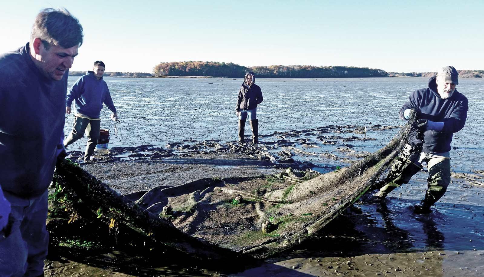 clammers haul net on beach