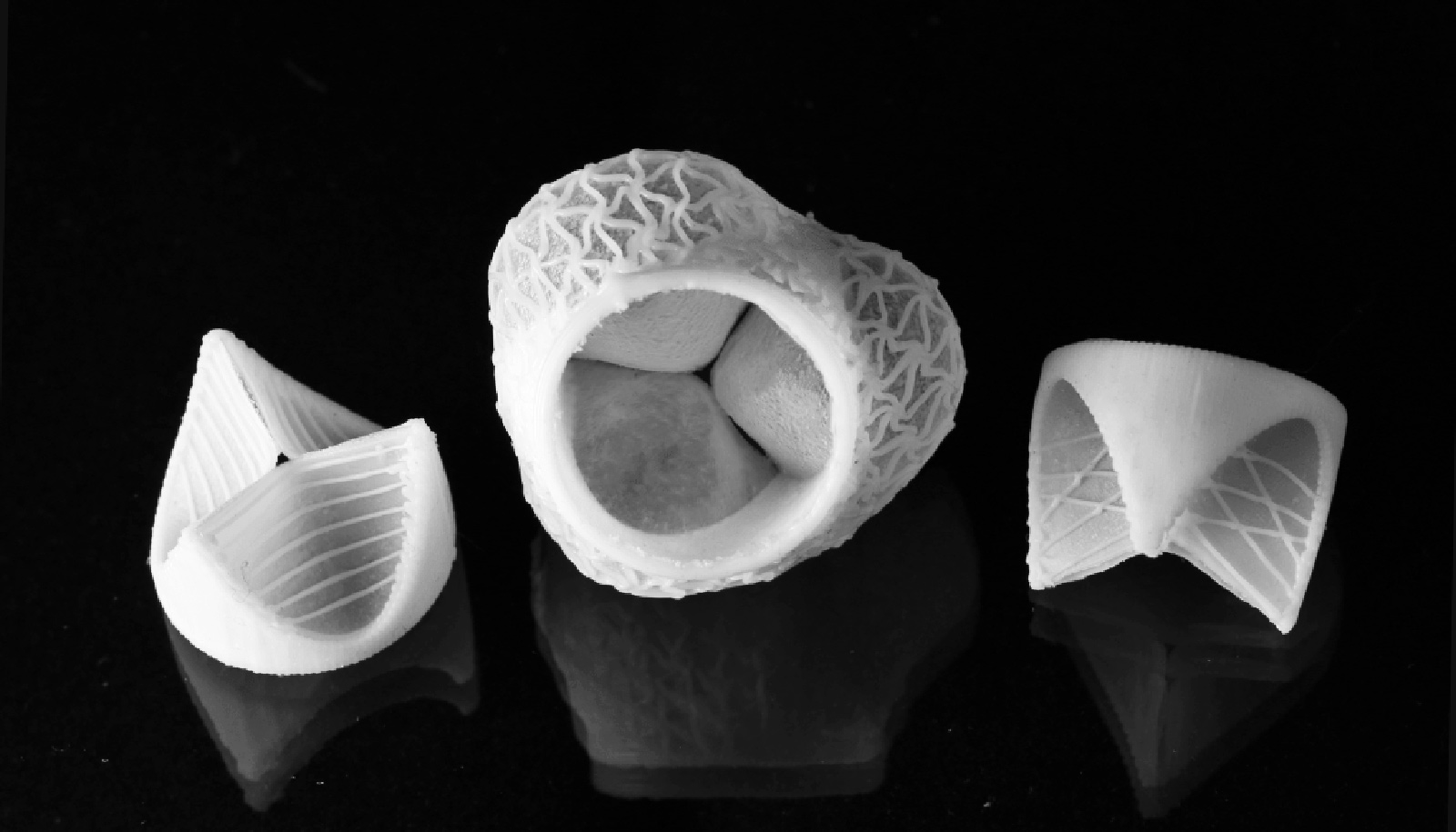 Custom 3d-printed Heart Valves Fit Perfectly