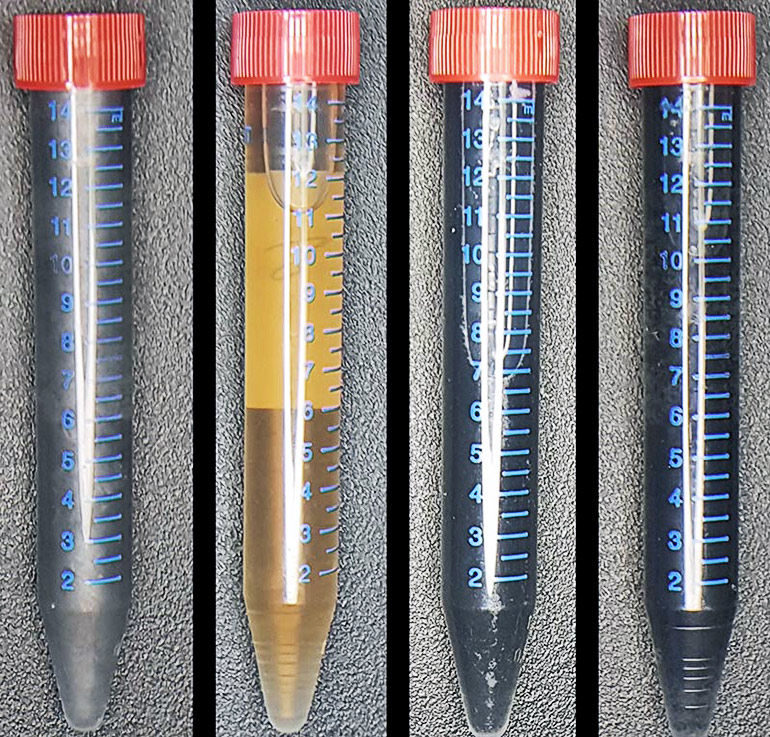 graphene tubes