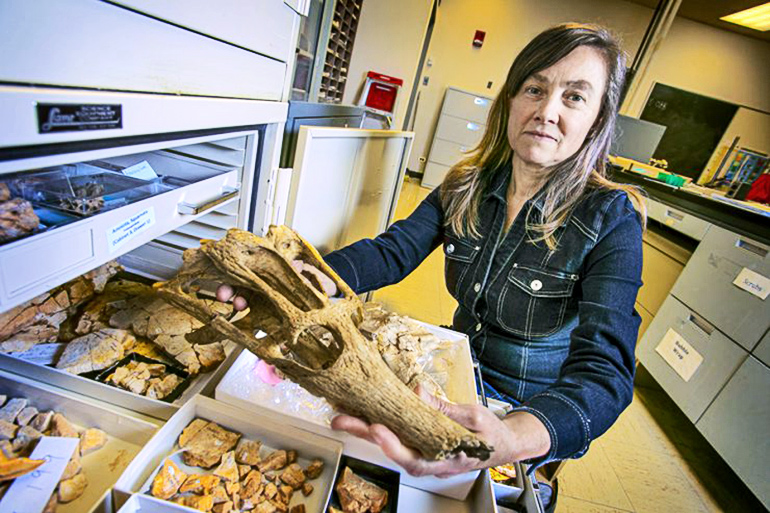 Maureen O'Leary holds a skull of a 65 million-year-old crocodylomorph