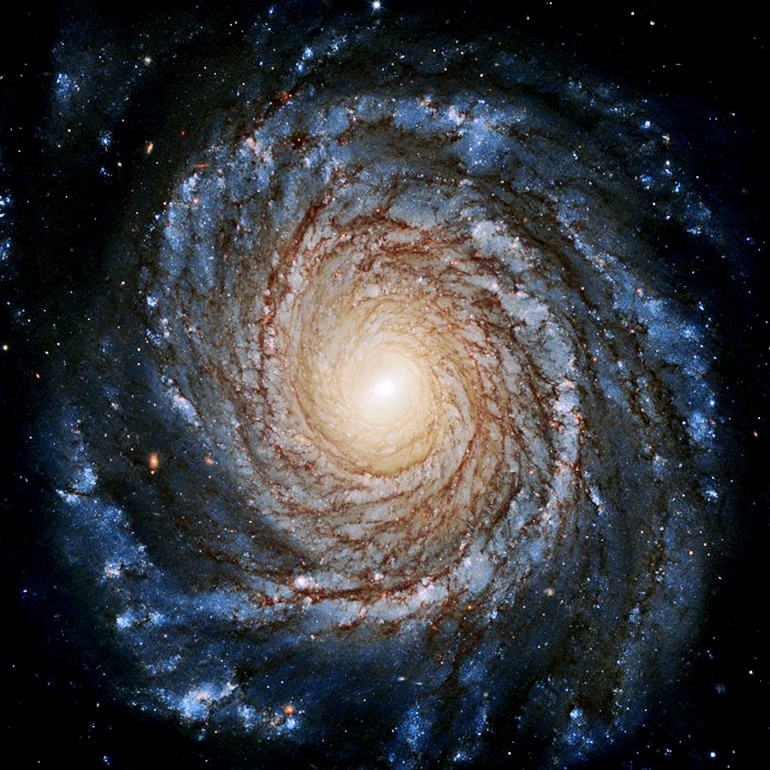 A cloudy swirl filled with stars surrounds a bright center of the galaxy against the black background of space