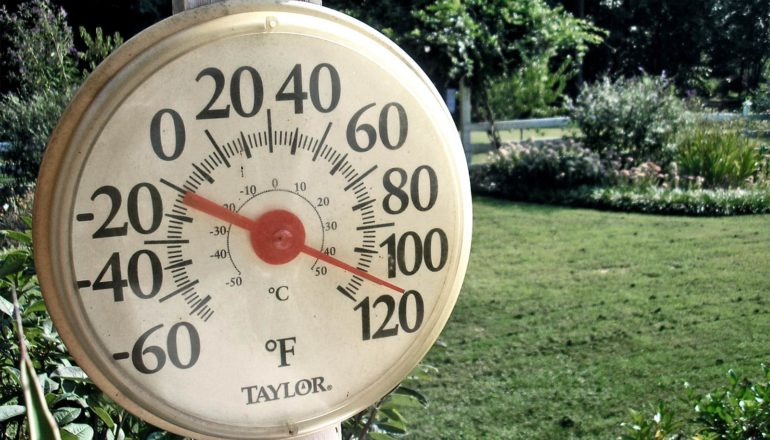 The image shows a thermometer in a yard showing a temperature around 110 degrees Fahrenheit. (Pliocene concept)