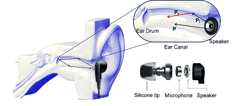 A diagram shows the EarEcho earbud in an ear, then a close-up of the ear drum inside the ear canal, and a breakdown of the earbud (which has a silicone tip, a microphone, and a speaker encased in plastic)