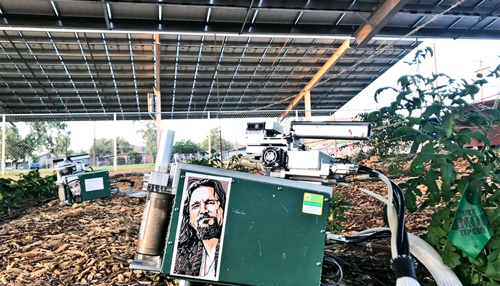 In the shade of the solar panels, a green device used for testing has a picture of actor Jeff Daniels as his character from the Big Lebowski, which sits next to some small crops