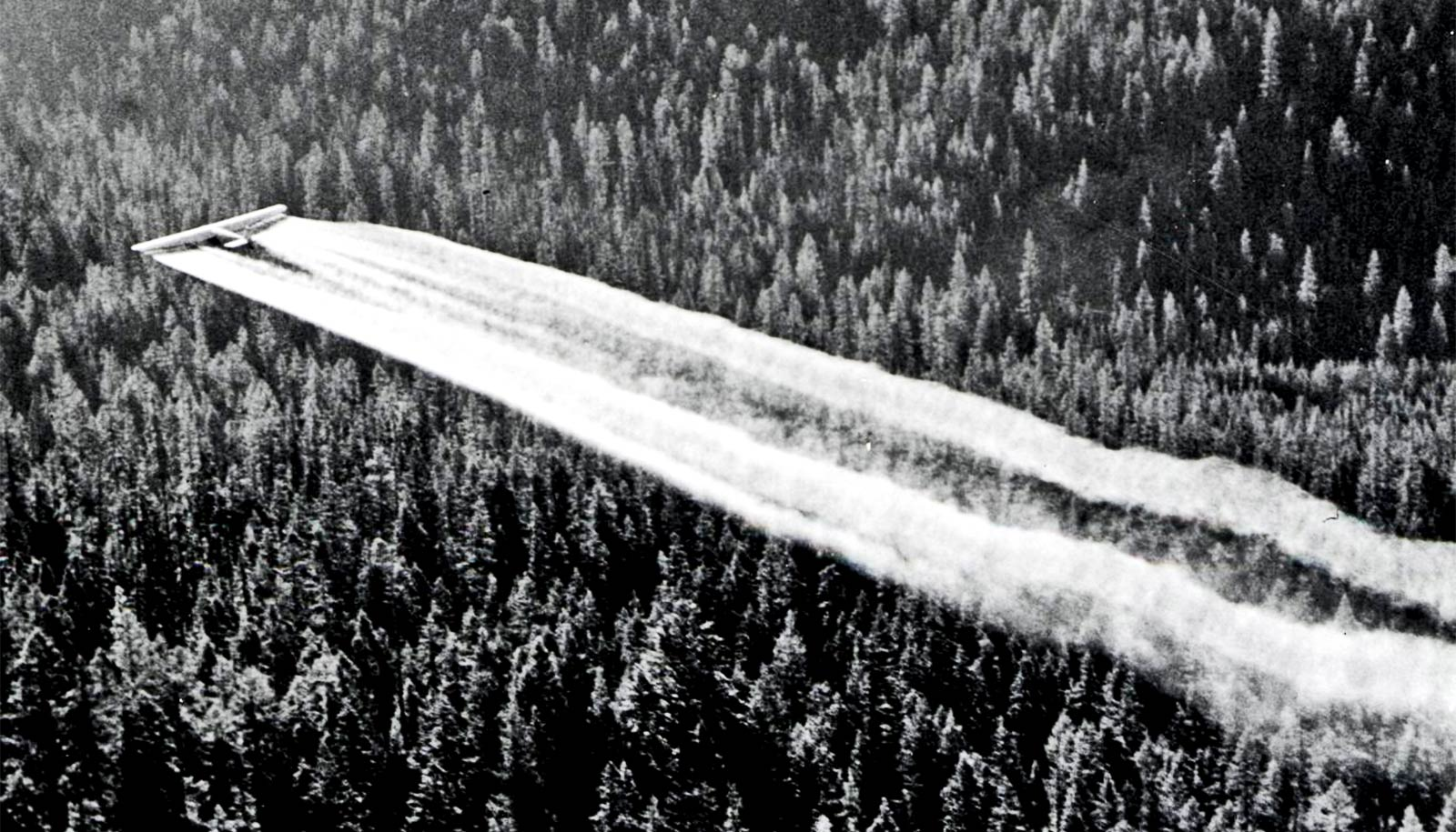 Nazi scientists created an alternative to DDT pesticide