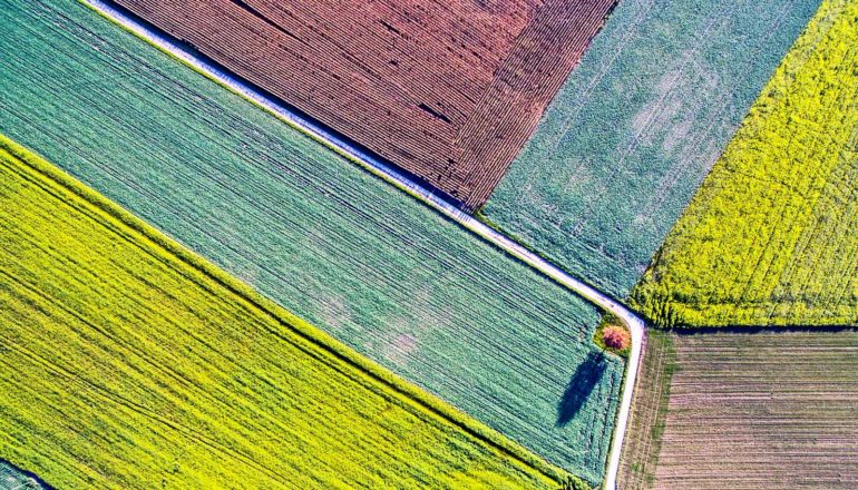 intersecting fields from above