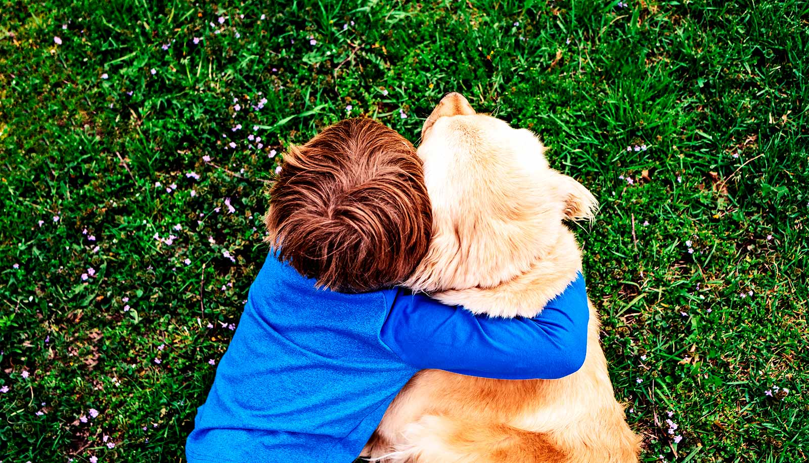 Pet dogs in childhood may cut schizophrenia risk